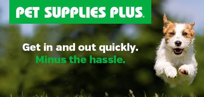 Pet Supplies Plus Image Get in and out quickly minus the hassle